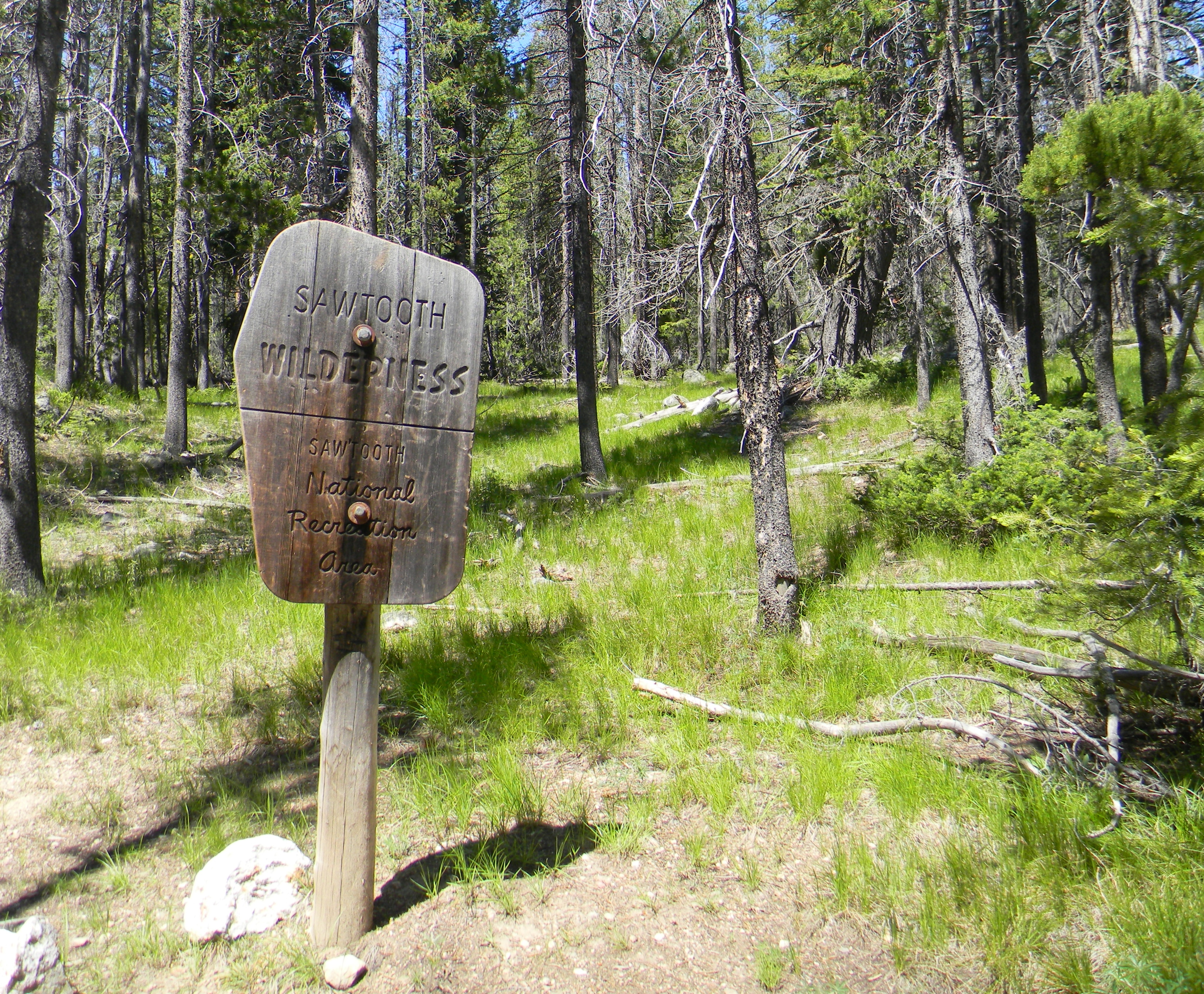 Contested Wilderness in Multiple Contexts